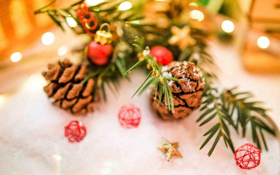 Gà Tây Không Phải Là Gà & 6 Ngạc Nhiên Thú Vị về Giáng Sinh